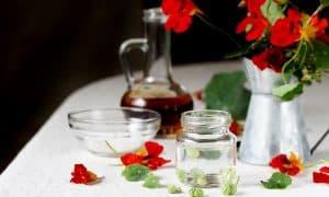 Zašto (i kako) jesti dragoljub?