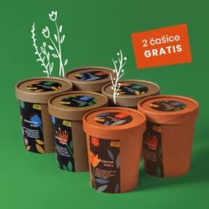 Zagonetne biljke / 4 + 2 gratis