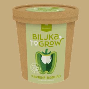 Biljka-To-Grow / Paprika babura