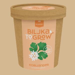 Biljka-To-Grow / Korijander