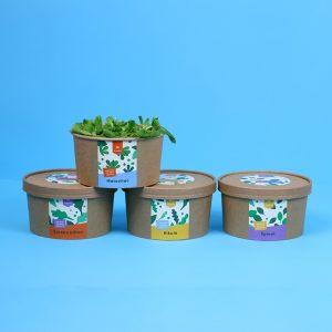 Baby salate / 3+1 GRATIS